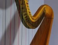 9708 Harp close up1600