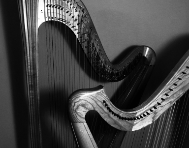 9730 Harps overlappedBW